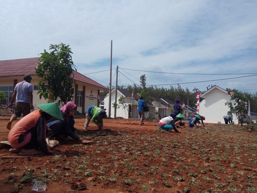 Warga di kawasan relokasi Desa Sukarapih, Kecamatan Cibeureum, Kabupaten Kuningan, bersiap diri menata lingkungan menyambut kedatangan Presiden Jokowi. (Indramayujeh)